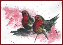 Birds complimentary colors