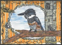 Kingfisher w fish wire drawing