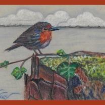 Bird pastel pencils