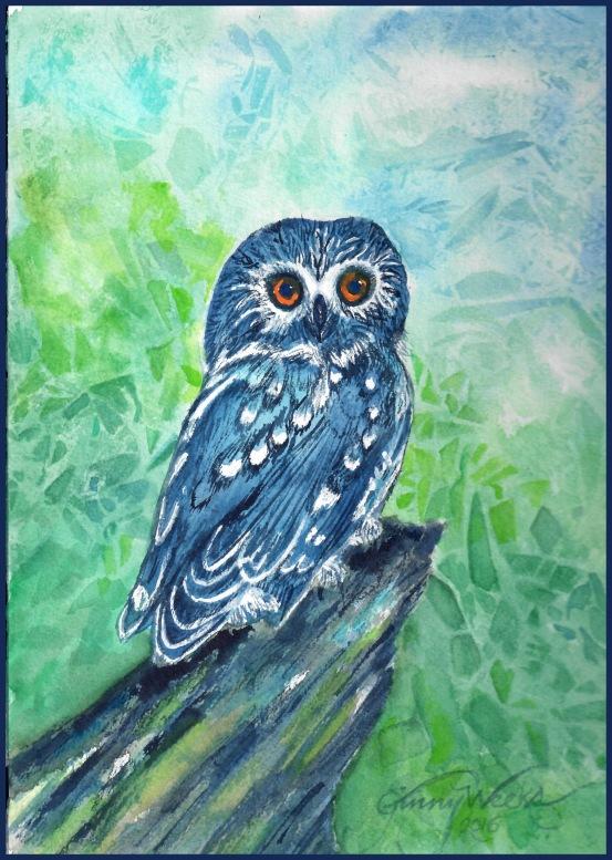 Blue Owl WC