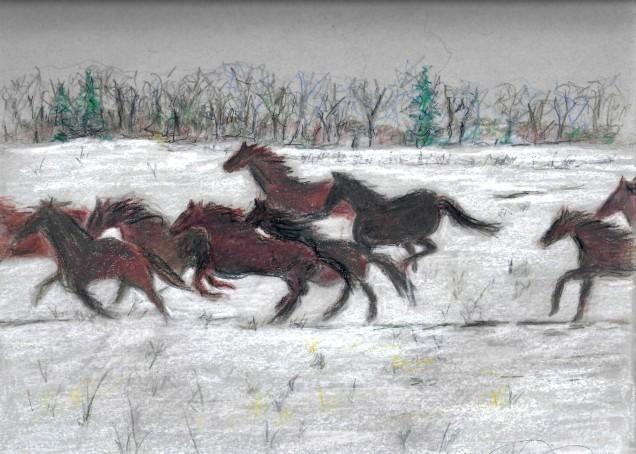 racing-horses-brkgs-12-2016-2